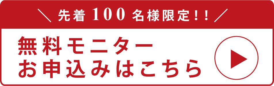 【限定先着100名様】アクセス数10倍!ブログ集客セミナー動画の無料モニター募集中